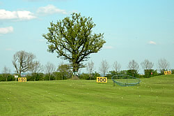 Belmont Driving Range – many players try to hit their driver over the tree at 175 yd marker